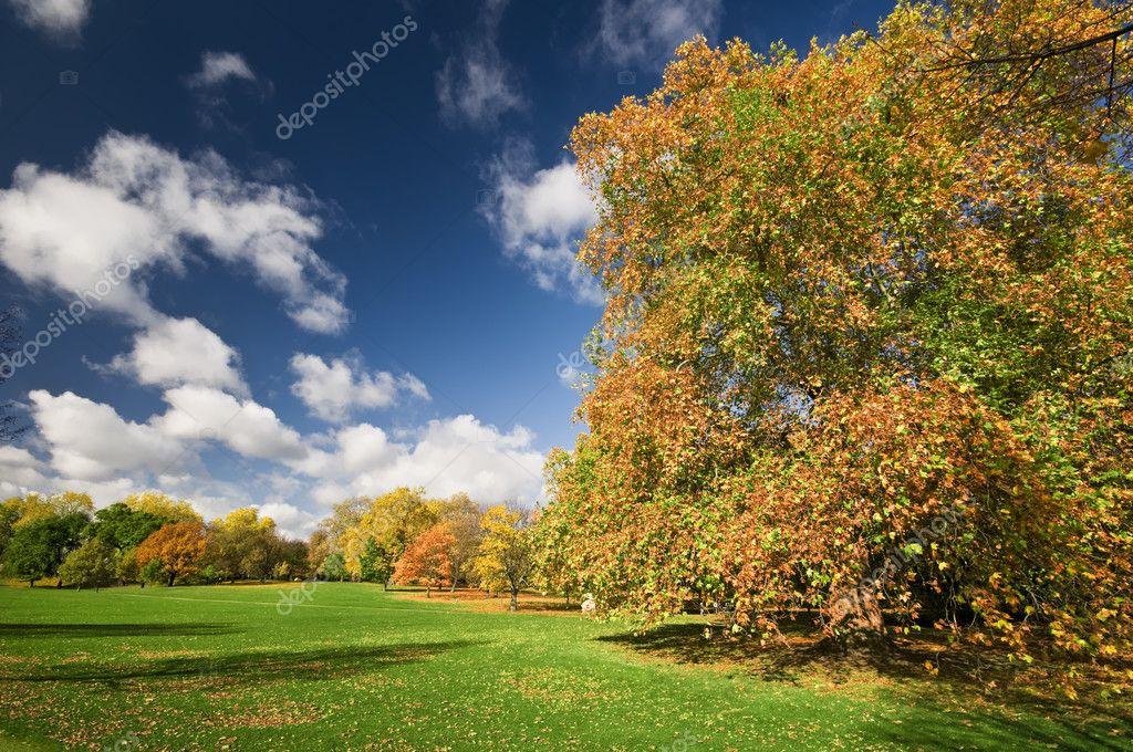 Hyde Park Autumn Sunny Autumn Day in Hyde Park