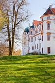 Celle castle, tyskland — Stockfoto