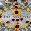 Imagine mosaic, full of flowers, in Central Park — Stock Photo