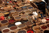 Working hard in the tannery of Fes, Morocco — Foto de Stock