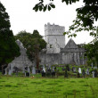 Stock Photo: Mucross Abbey, Killarney, Ireland
