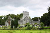 Mucross Abbey, Killarney, Ireland — Stock Photo