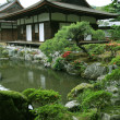 Japanese landscape garden — Stock Photo