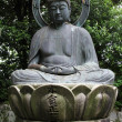 A statue of Buddha — Stock Photo