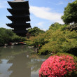 Toji Buddhist tower — Stock Photo