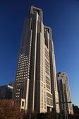 The Tokyo Metropolitan Government — Stock Photo