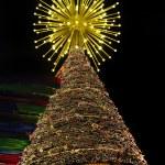 Christmas Tree — Stock Photo #3832905