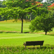 Golf Greens — Stockfoto