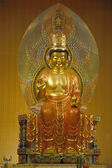 Boeddha tand relikwie tempel en museum — Stockfoto