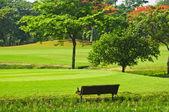 Golf yeşiller — Stok fotoğraf