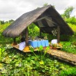 Stock Photo: Nipa Hut