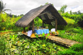 Nipa Hut — Stock Photo