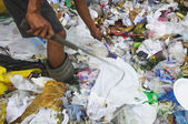 Garbage Scavenger — Stock Photo