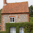 Stock Photo: Quaint Norfolk cottage