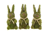 Three Easter bunnies — Stock Photo