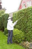 Man exterminating wasps — Stock Photo