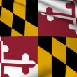 Maryland flagga - usa staten flaggor samling — Stockfoto #3922690