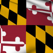 Stock Photo: Maryland flag - USstate flags collection