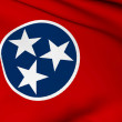 Tennessee flag - USA state flags collection — Stock Photo