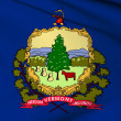 Vermont flag - USA state flags collection — Stock Photo