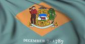 Delaware flag - USA state flags collection — Stock Photo