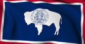 Wyoming flag - USA state flags collection — Stock Photo