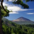 Teide mountain and Orotava valley - Stock Photo