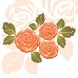 Stock Vector: Orange Roses