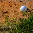 Royalty-Free Stock Photo: Sand Trap 1