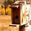 Birdhouse — Foto Stock #3905804