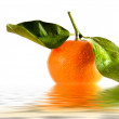 Royalty-Free Stock Photo: Tangerine