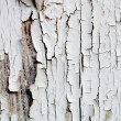 Cracked white Paint — Stock Photo #3909502