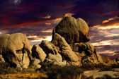 Sunset in Joshua Tree Nat Park — Stock Photo