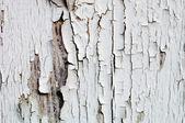 Cracked white Paint — Zdjęcie stockowe