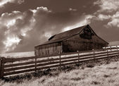 Bodega Barn — Stock Photo