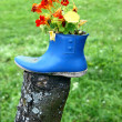 Funny flower decoration — Stock Photo