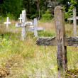 Abandoned cemetery — Stock Photo
