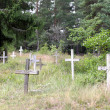 Stock Photo: Rotting crosses