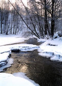 Winter scenery — Stockfoto