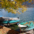 Boats in autumn — Stockfoto