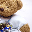 Soft bear close-up — Stock Photo