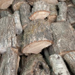 Logs — Stock Photo #3899820