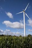 风电机组在 flieds 2 — 图库照片