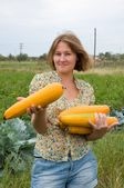 Marrow harvest — Stock Photo