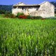 Paysage du Lubéron - Stock Photo
