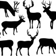 Stock Vector: Deers