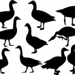 Royalty-Free Stock Vector Image: Goose