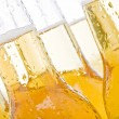 Beer bottles - Stock Photo