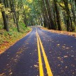 Fall winding forest mountain road - Stock Photo