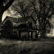 Haunted house monochrome — Stock Photo #3892707
